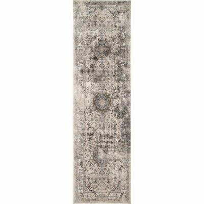 Doheny Gray/Ivory Area Rug Rug Size: Runner 25 x 8