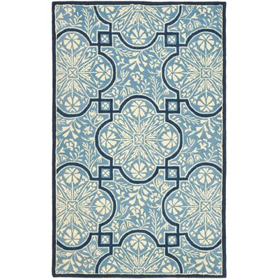 French Painted Avignon Hand-Loomed Kerry Blue Area Rug Rug Size: 4 x 6