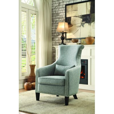 Braschi Armchair Color: Grey