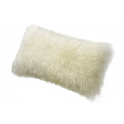 Brookhill Lumbar Pillow Color: Ivory