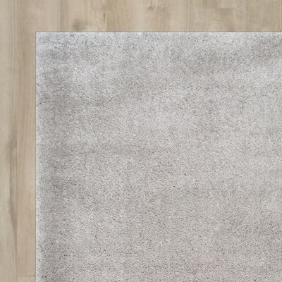 Gian Silver Area Rug Rug Size: Rectangle 33 x 5