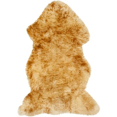 Dax Sheepskin Champagne Area Rug Rug Size: Rectangle 2 x 3