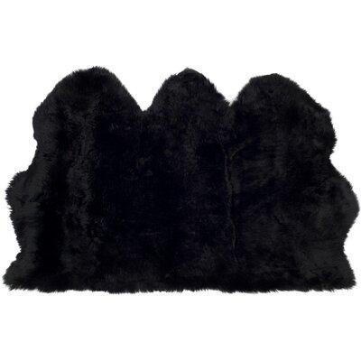 Witney Black Area Rug Rug Size: 3 x 5