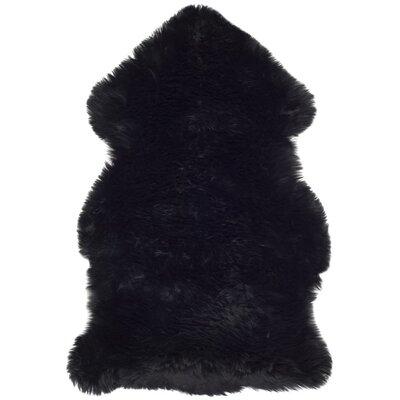 Dax Black Area Rug Rug Size: 2 x 3