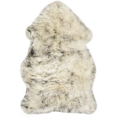 Dax Ivory / Smoke Gray Area Rug Rug Size: 2 x 3