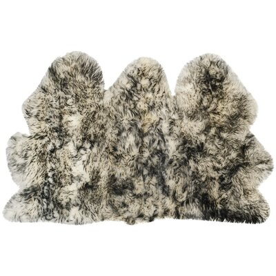 Dax Ivory / Dark Gray Area Rug Rug Size: 3 x 5
