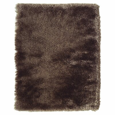 Kingsley Dark Brown Area Rug Rug Size: 2 x 34