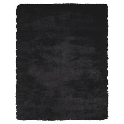 Kingsley Black Rug Rug Size: 36 x 56