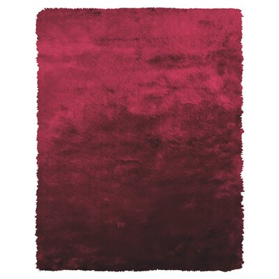 Coyan Cranberry Area Rug Rug Size: Rectangle 36 x 56