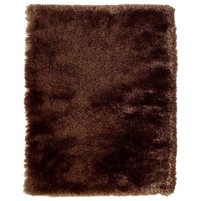 Coyan Solid Dark Brown Area Rug Rug Size: Rectangle 36 x 56
