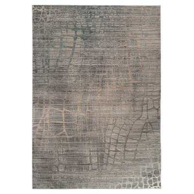 Boathaven Grey / Multi Area Rug Rug Size: 2 x 3
