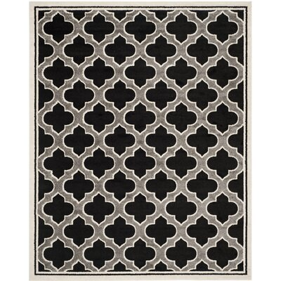 Maritza Anthracite/Ivory Outdoor Woven Area Rug Rug Size: 9 x 12