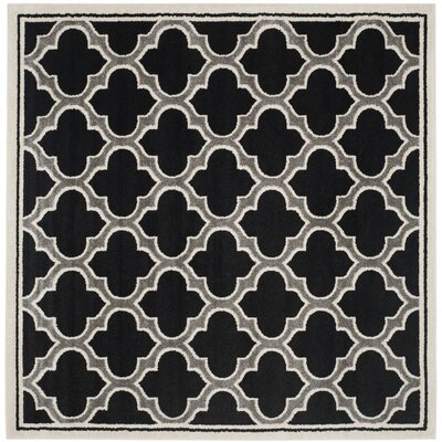 Maritza Anthracite/Ivory Outdoor Woven Area Rug Rug Size: Square 7