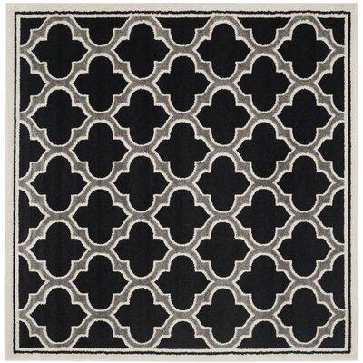 Maritza Black/Gray Indoor/Outdoor Area Rug Rug Size: Square 7