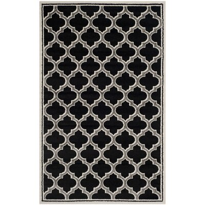 Maritza Anthracite/Ivory Outdoor Woven Area Rug Rug Size: 6 x 9