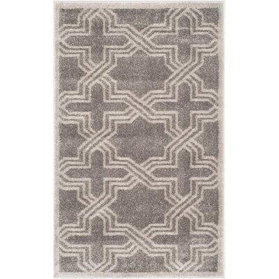 Currey Grey/Light Grey Outdoor Area Rug Rug Size: 6 x 9