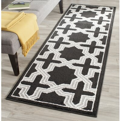 Maritza Anthracite/Grey Area Rug Rug Size: Runner 23 x 7