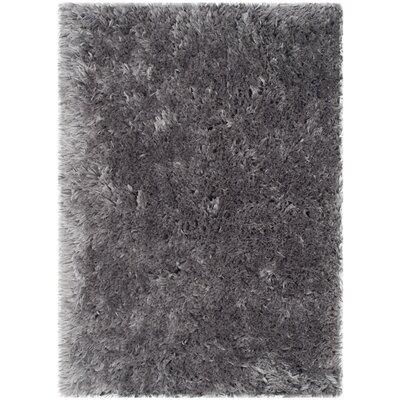 Earley Shag Grey Area Rug Rug Size: 5 x 76