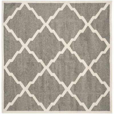 Maritza Dark Gray/Beige Indoor/Outdoor Woven Area Rug Rug Size: Square 7