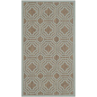 Olsene Brown / Aqua Indoor/Outdoor Area Rug Rug Size: Rectangle 2 x 37