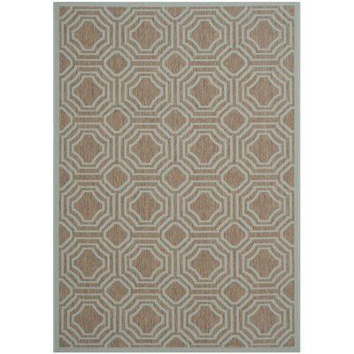 Olsene Brown / Aqua Indoor/Outdoor Area Rug Rug Size: 53 x 77