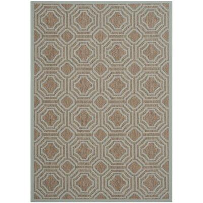 Olsene Brown / Aqua Indoor/Outdoor Area Rug Rug Size: Rectangle 9 x 12