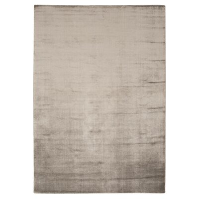 Buiron Taupe Area Rug Rug Size: 76 x 106