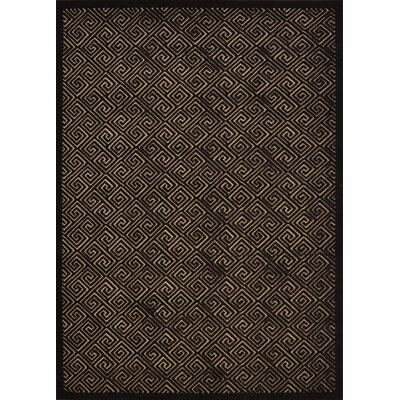 Blondelle Espresso Area Rug Rug Size: Rectangle 53 x 73