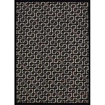 Blondelle Rectangle Black Area Rug Rug Size: 22 x 39