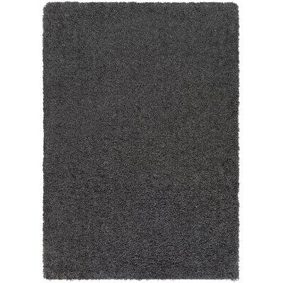 Roberto Black Area Rug Rug Size: 53 x 73