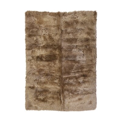 Christofor Sheepskin Longwool Taupe Rug Rug Size: Rectangle 56 x 710