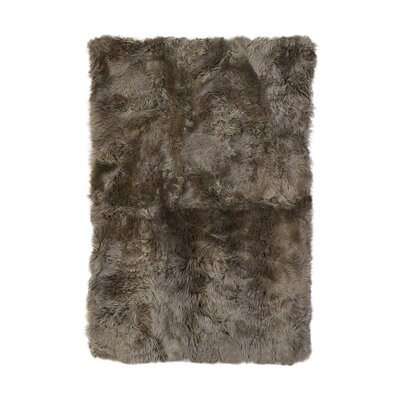 Christofor Sheepskin Longwool Natural Area Rug Rug Size: Rectangle 56 x 710