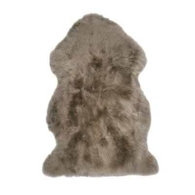Christofor Sheepskin Taupe Rug Rug Size: Rectangle 2 x 3