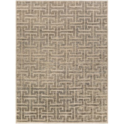 Amita Hand-Knotted Gray Area Rug Rug Size: Rectangle 5 x 8