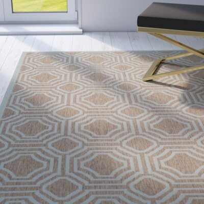 Olsene Brown / Aqua Indoor/Outdoor Area Rug Rug Size: Rectangle 53 x 77