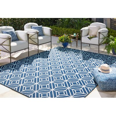 Harldson Aqua Indoor/Outdoor Area Rug Rug Size: 5'3