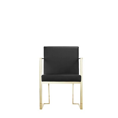 Espinoza Arm Chair Upholstery: Black