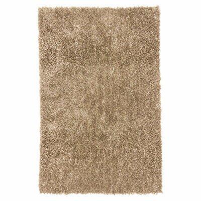 Woodside Taupe Shag Area Rug Rug Size: 36 x 56