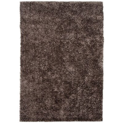 Woodside Warm Gray Shag Area Rug Rug Size: 5 x 76