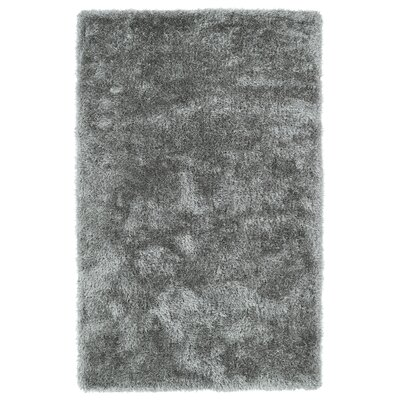 Selman Silver Area Rug Rug Size: Rectangle 5 x 7