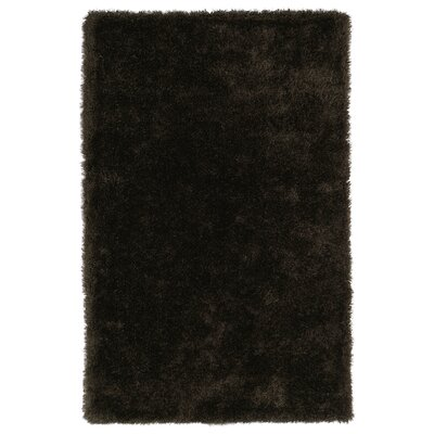 Selman Chocolate Area Rug Rug Size: Rectangle 5 x 7