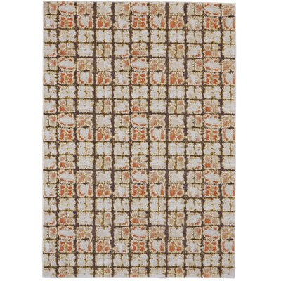 Reiff Orange Area Rug Rug Size: Round 8