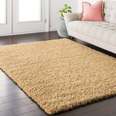 Roberto Beige Area Rug Rug Size: Rectangle 2 x 3