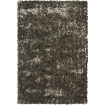 Montpelier Silver Area Rug Rug Size: Rectangle 10 x 14