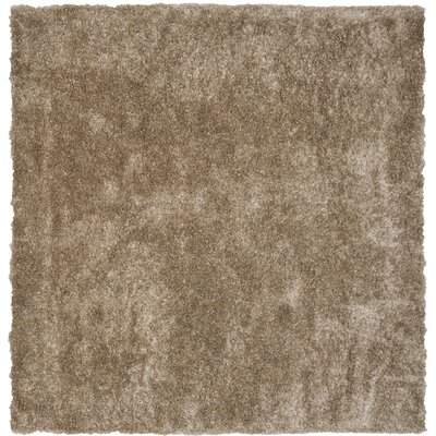 Maya Hand-Tufted/Hand-Hooked Brown Area Rug Rug Size: Square 5