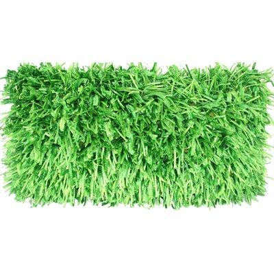 Leonard Lumbar Pillow Color: Green