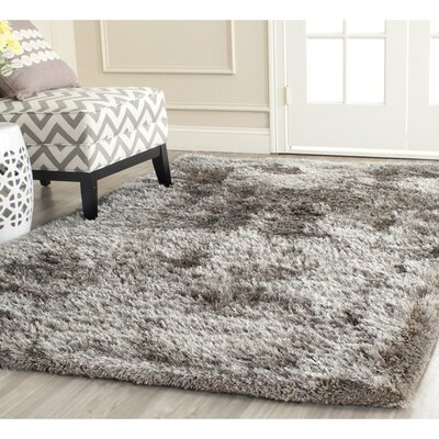 Maya Silver Shag Area Rug Rug Size: Rectangle 6 x 9
