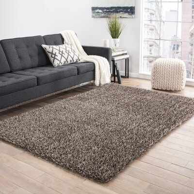 Woodside Warm Gray Shag Area Rug Rug Size: 36 x 56