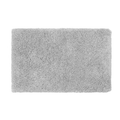 Nasim Silver Area Rug Rug Size: Rectangle 23 x 38