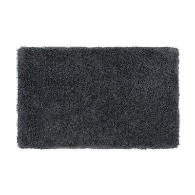 Nasim Charcoal Area Rug Rug Size: Rectangle 23 x 39